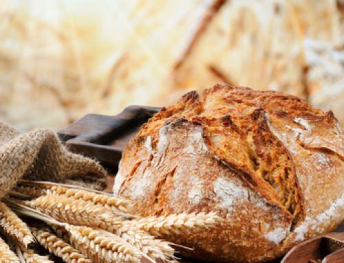 Hablemos de pan